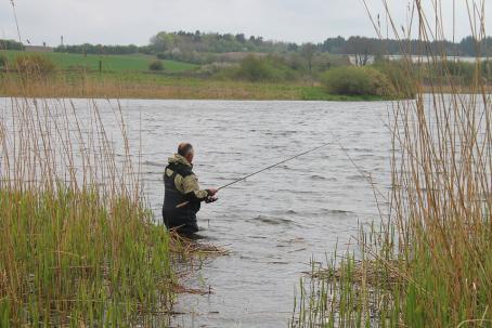 sennik Łowić ryby - sennik