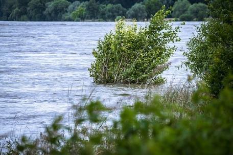 sennik Powódź - Sennik