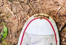 sennik Szukanie butów - Sennik
